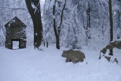 3.1.20 Historischer Bärenfang auf dem Waldstein im Winter